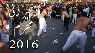 10 Muharram Jaloos Zanjeer Zani Zuljanah Pursa Matam Lahore Pakistan 2016
