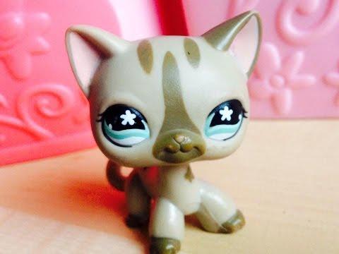 Littlest Pet Shop: Zprávičky #3 (Video ve videu)🌸