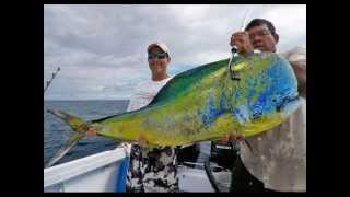 World's Biggest Dorado (Mahi Mahi) Ever Caught