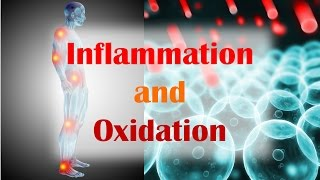 Inflammation and Oxidation