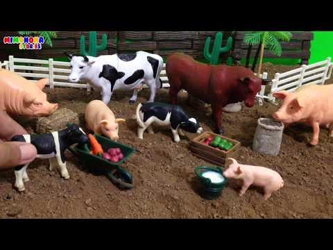 Xxx Mp4 Vaca🐮 Y Cerdo🐷 Para Niños Juegos De Animales De La Granja Mimonona Stories 3gp Sex