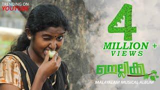 NELLIKKA|MALAYALAM MUSICAL ALBUM 2019|A GOOSEBERRY LOVE