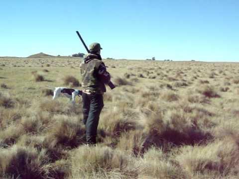Doblete de perdiz y liebre que dejo pagando al cazador.
