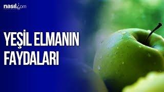 Yeşil Elmanın Faydaları   Sağlık   Nasil.com