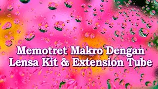 TUTORIAL FOTOGRAFI (2019): Motret Makro Dengan Lensa Kit & Extension Tube