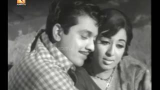 Thettu Malayalam Full Movie | #Sathyan #Sheela #AmritaOnlineMovies