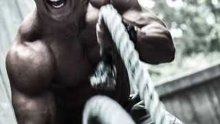 BATTLE ROPES TRAINING TMT Systems