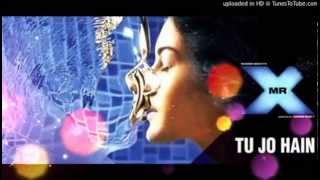 Tu Jo Hain Mr X Ankit Tiwari Full Karaoke Original Instrumental