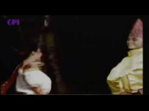 PENARI MUSRO - VidoEmo - Emotional Video Unity