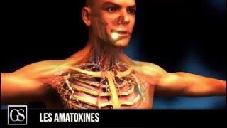 Top 5 des poisons naturels les plus mortels au monde!