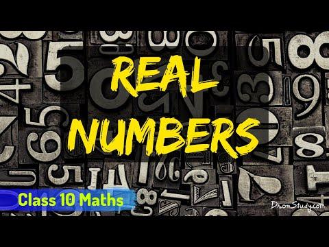 Xxx Mp4 Real Numbers CBSE Class 10 X Maths 3gp Sex