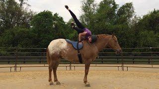Woman Does Yoga On Horses' Back