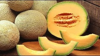 هل تعلم ماذا يحدث لجسمك إذا أكلت البطيخ الأصفر.. لن تصدق !