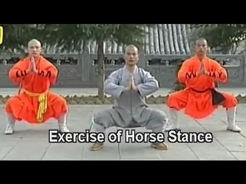 Shaolin kung fu basic moves 1