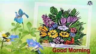 Good Morning Wishes..  whatsaap video English