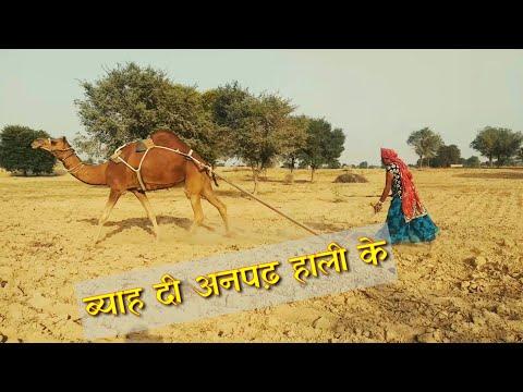 गांम की लुगाई | देसी जाटणी | Lifestyle of Deshi | Official Rajsthani Comedy by Baba 420 Team