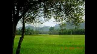 XOMOY JEN THOMOKI ROI - Zubeen Garg Assamese song