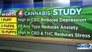 """WA State University Study Finds Cannabis """"Reduces Depression! Reduces Anxiety! Reduces Stress!"""""""