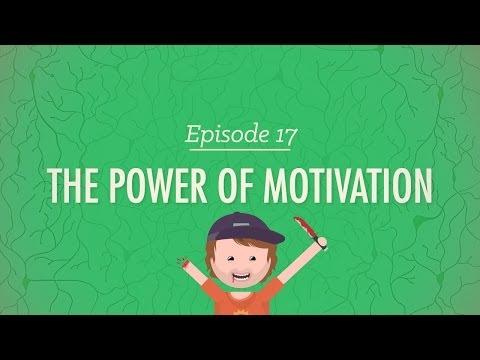 Xxx Mp4 The Power Of Motivation Crash Course Psychology 17 3gp Sex