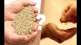 هل يبطل صيام من لا يخرج زكاة الفطر؟ زكاة الفطر هل اخراجها نقدا أو  إخراجها من الطعام !