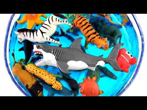 Xxx Mp4 Box Of Toys Wild Zoo Animals Learn Zoo Animal Names Safari Toy For Kids 3gp Sex