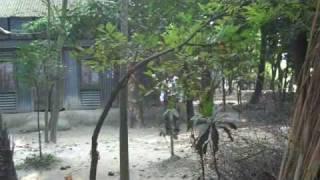 2009 Bangladesh 1 - In Search of Paisagaon পয়সাগাঁও