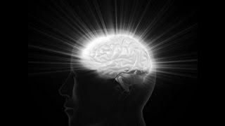 The Divine Brain (Part 2 of 2)