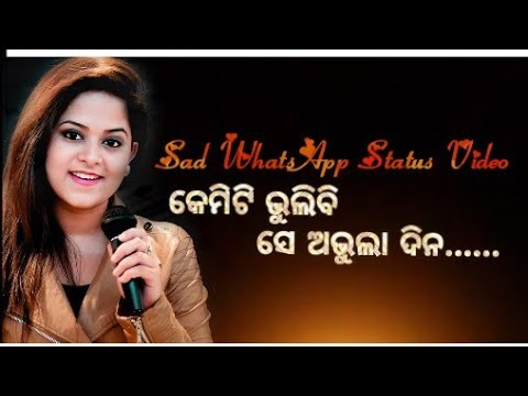 Kemiti bhulibi se abhula Dina odia female version WhatsApp status video
