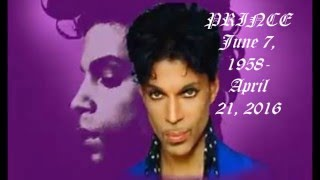 PRINCE (NEW VIDEO)