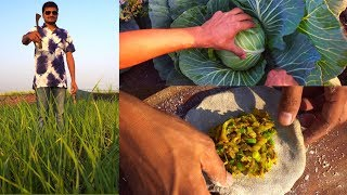 Deshi Khana | Cabbage Roti and Tomato Chutney | Indian Food Cooking in a Village