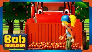 Bob the Builder full episodes | Apples Everywhere ⭐ NEW Season 20 Compilation ⭐ Cartoon for Kids