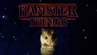 Hamster Things -