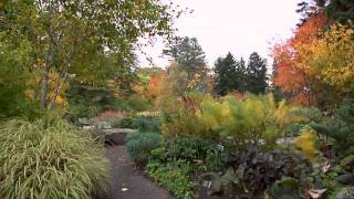 Treasures of New York: The New York Botanical Garden