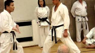Shihan Mikio Yahara 8th dan Mawashigeri Demonstration