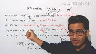 Transgenic animals and their applications.