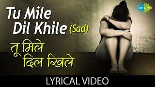 Tu Mile Dil Khile with Lyrics   तू मिले दिल खेले गाने के बोल   Criminal  Manisha Koirala, Nagarjuna