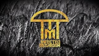 Infected Mushroom - Fields of Grey Feat. Sasha Grey (Lyric Video)