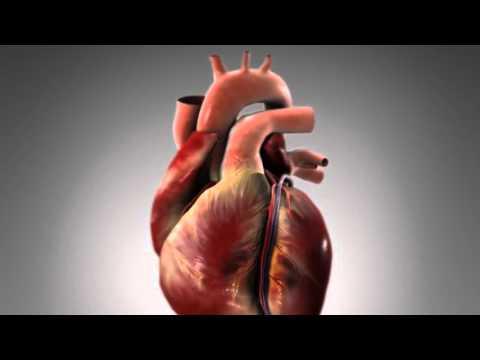 intimnaya-zhizn-pri-infarkte