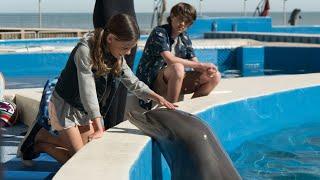 Bernie The Dolphin (2019) Official Trailer (HD)