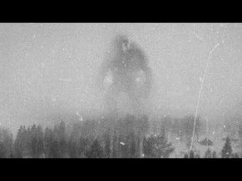 10 Trail Camera Photos That CANNOT Be Explained