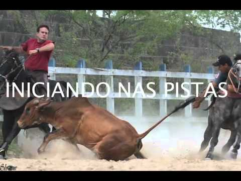 FILHO DO ROXÃO