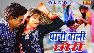 Latest Dance Song # Pani Wali Chhori # New Songs 2016 Haryanvi # DJ Dance Dhamaka # NDJ Music