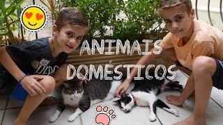 Pedablios e os Pets - Animais de Estimação/ Gatos