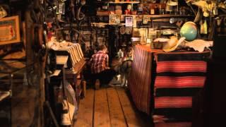 Timber the Treasure Dog - Trailer