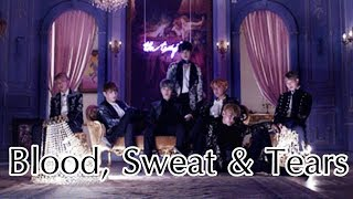 Bangtan Boys (방탄소년단) - 피땀눈물 'Blood Sweat & Tears' (English Cover)