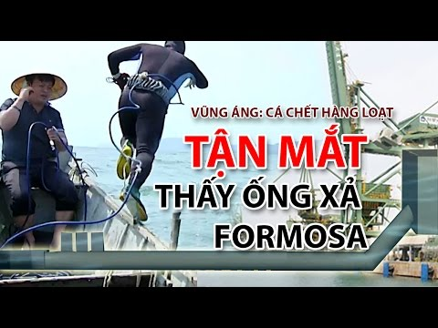 (VTC14)_Mục sở thị ống xả thải của Formosa dưới đáy biển Vũng Áng