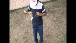 Yoyo Colombia Claw of the lion