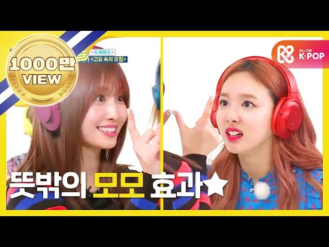 (Weekly Idol EP.304) Unexpected MOMO EFFECT??!!
