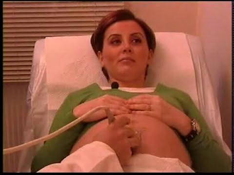 Hafta hafta hamilelik gebelik 2. Bölüm Dr. K.Kocatepe