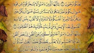 آيات من سورة الحجرات بصوت جميل جدا| قران_كريم